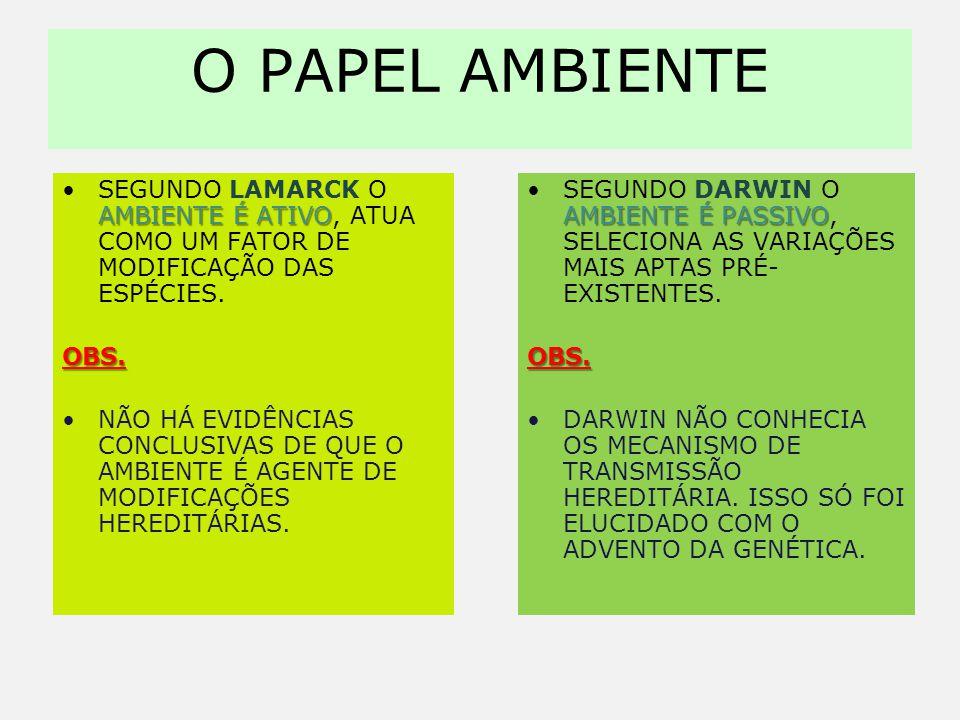 O PAPEL AMBIENTE Segundo Lamarck o ambiente é ativo, atua como um fator de modificação das espécies.