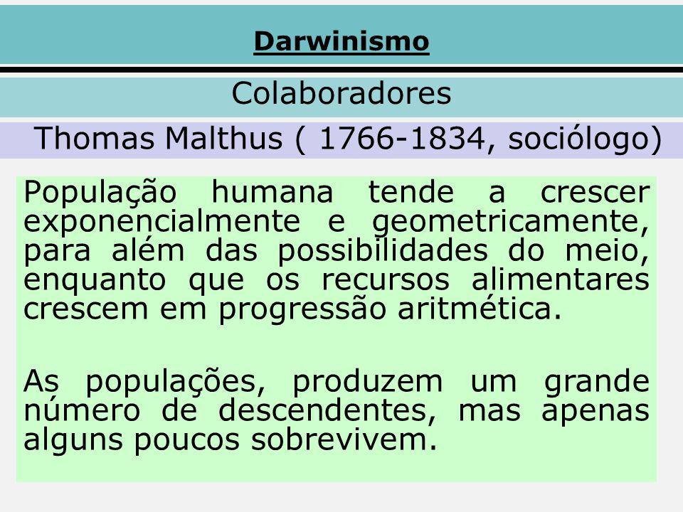 Thomas Malthus ( 1766-1834, sociólogo)