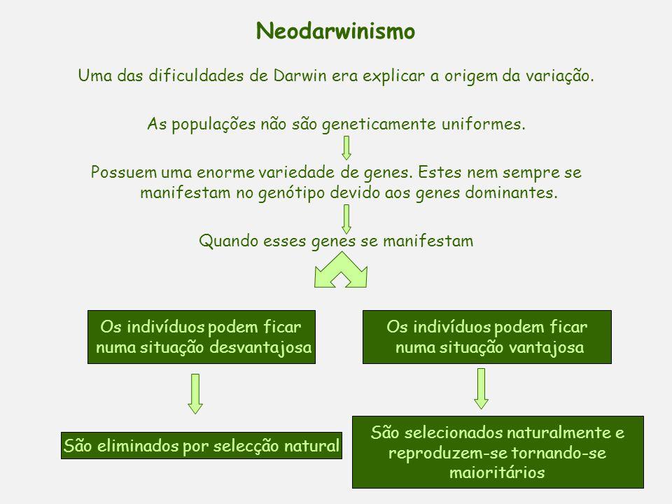 Neodarwinismo Uma das dificuldades de Darwin era explicar a origem da variação. As populações não são geneticamente uniformes.