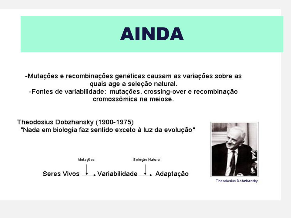 AINDA