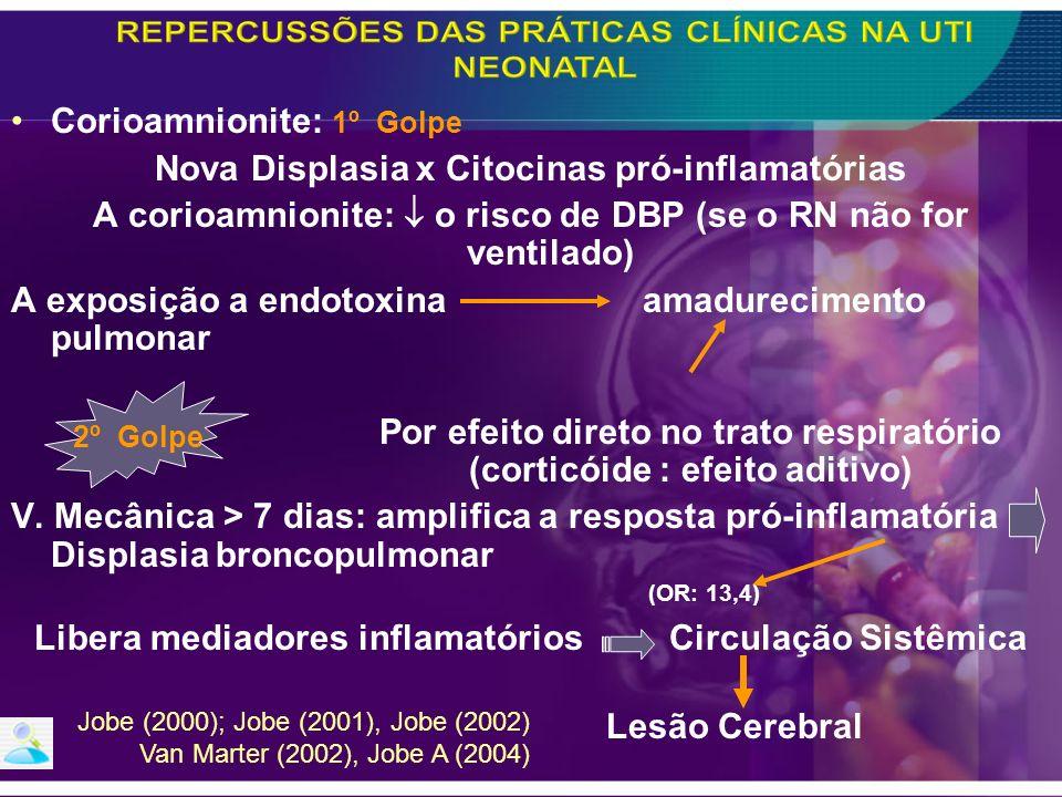 Corioamnionite: 1º Golpe Nova Displasia x Citocinas pró-inflamatórias