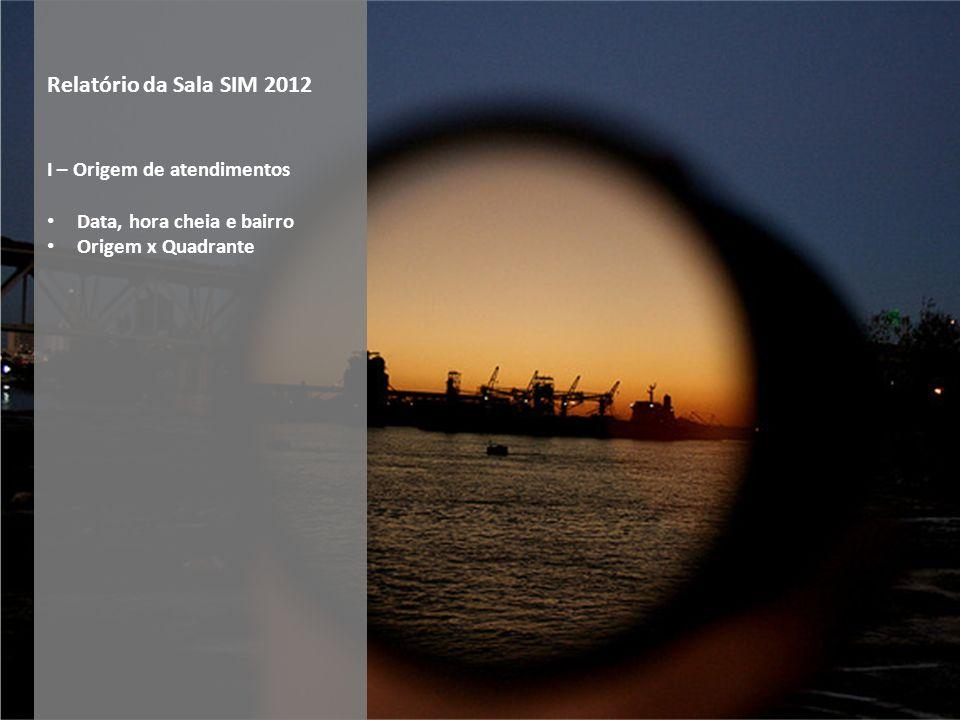 Relatório da Sala SIM 2012 I – Origem de atendimentos