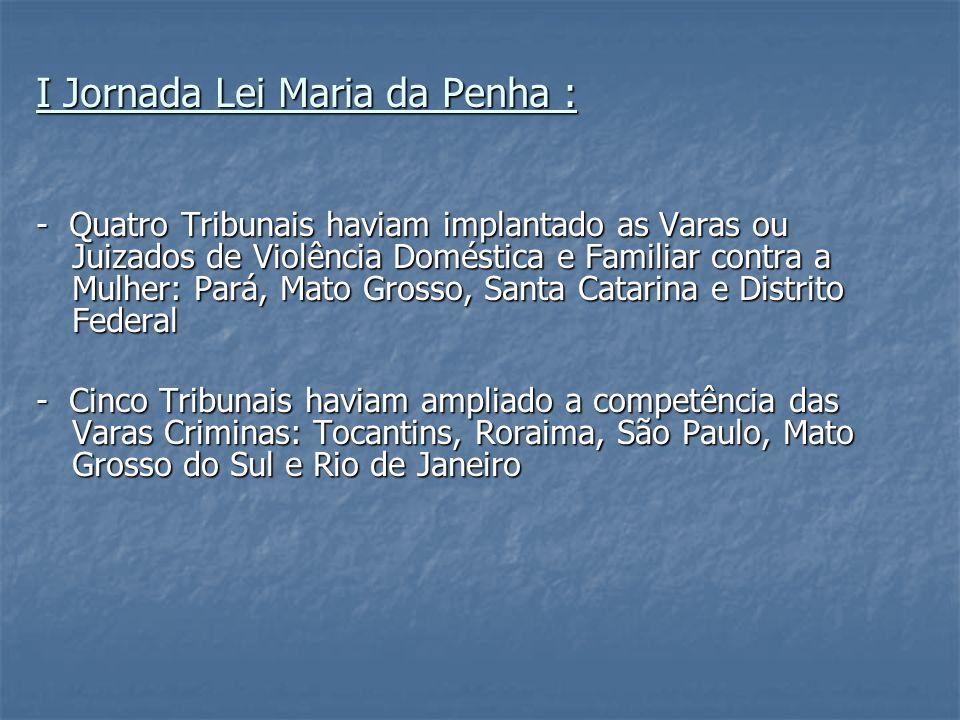 I Jornada Lei Maria da Penha :