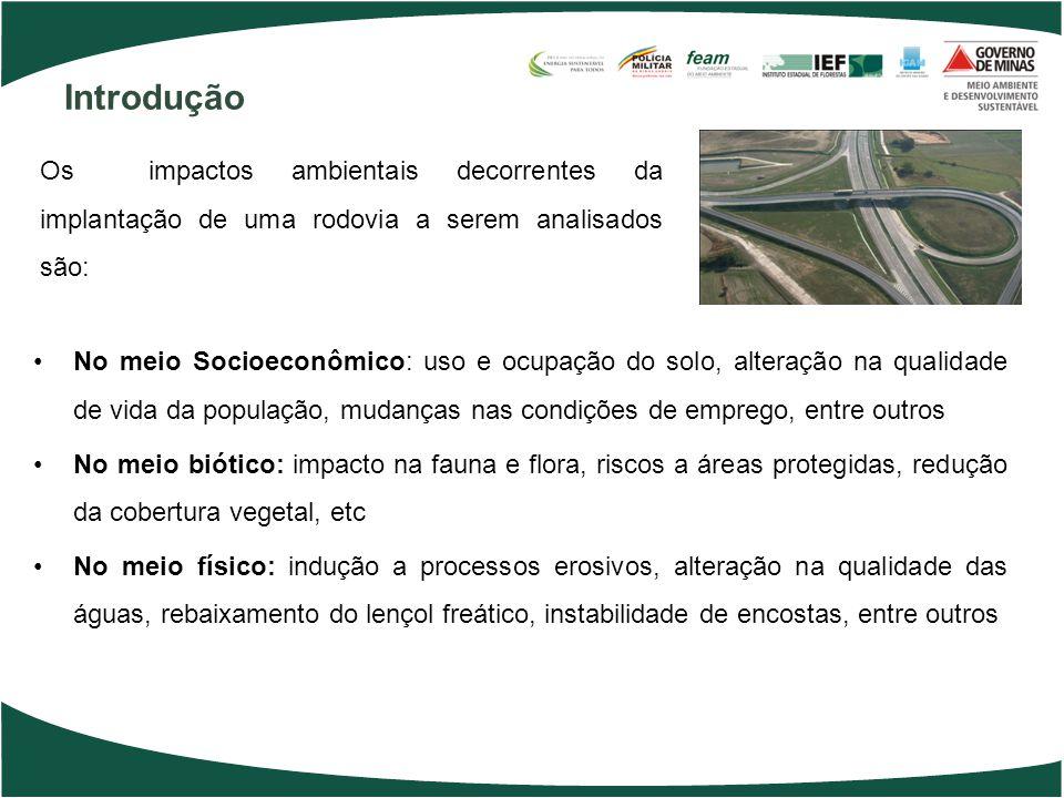 Introdução Os impactos ambientais decorrentes da implantação de uma rodovia a serem analisados são: