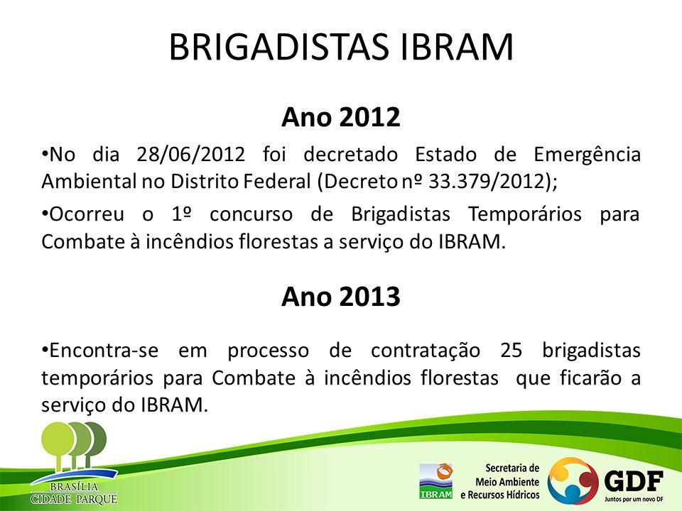 BRIGADISTAS IBRAM Ano 2012 Ano 2013