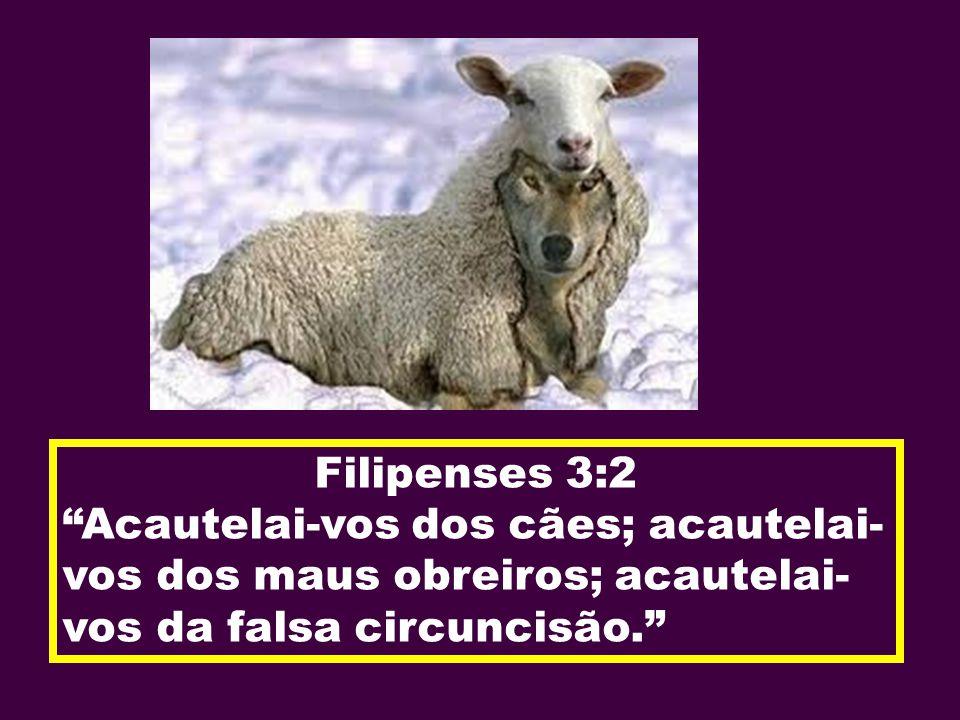 Filipenses 3:2 Acautelai-vos dos cães; acautelai-vos dos maus obreiros; acautelai-vos da falsa circuncisão.