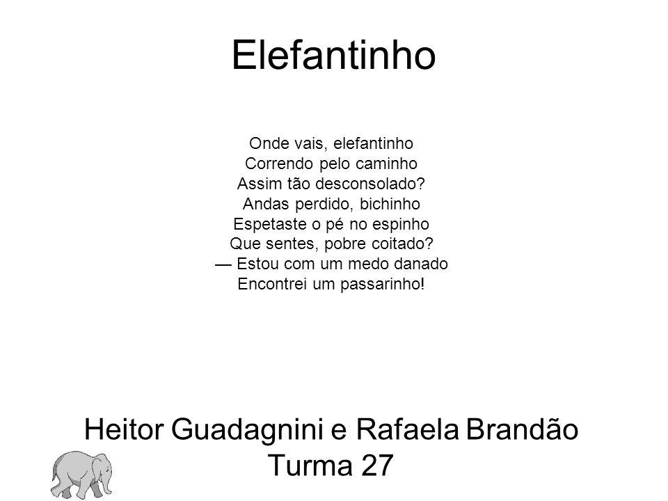Heitor Guadagnini e Rafaela Brandão Turma 27