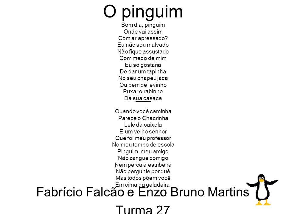 Fabrício Falcão e Enzo Bruno Martins Turma 27