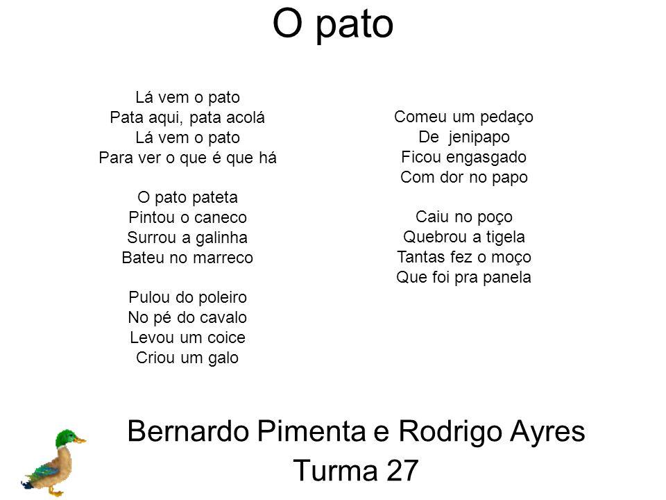 Bernardo Pimenta e Rodrigo Ayres Turma 27