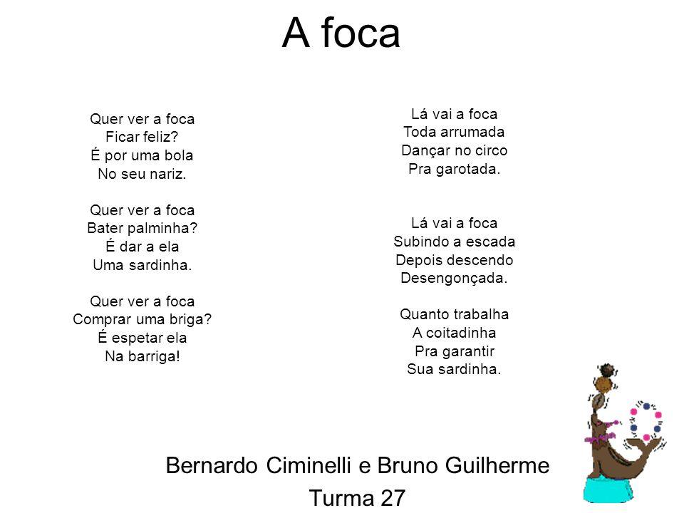 Bernardo Ciminelli e Bruno Guilherme Turma 27