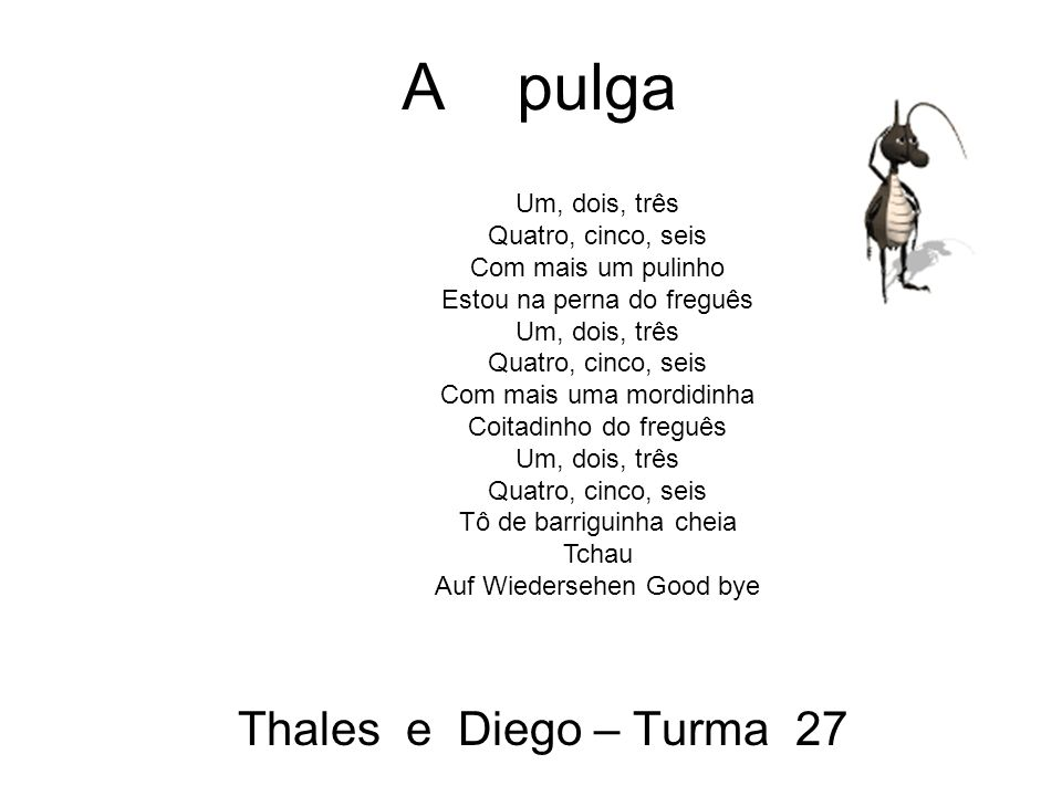 A pulga Thales e Diego – Turma 27