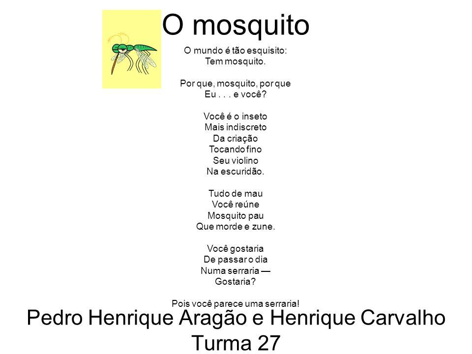 Pedro Henrique Aragão e Henrique Carvalho Turma 27