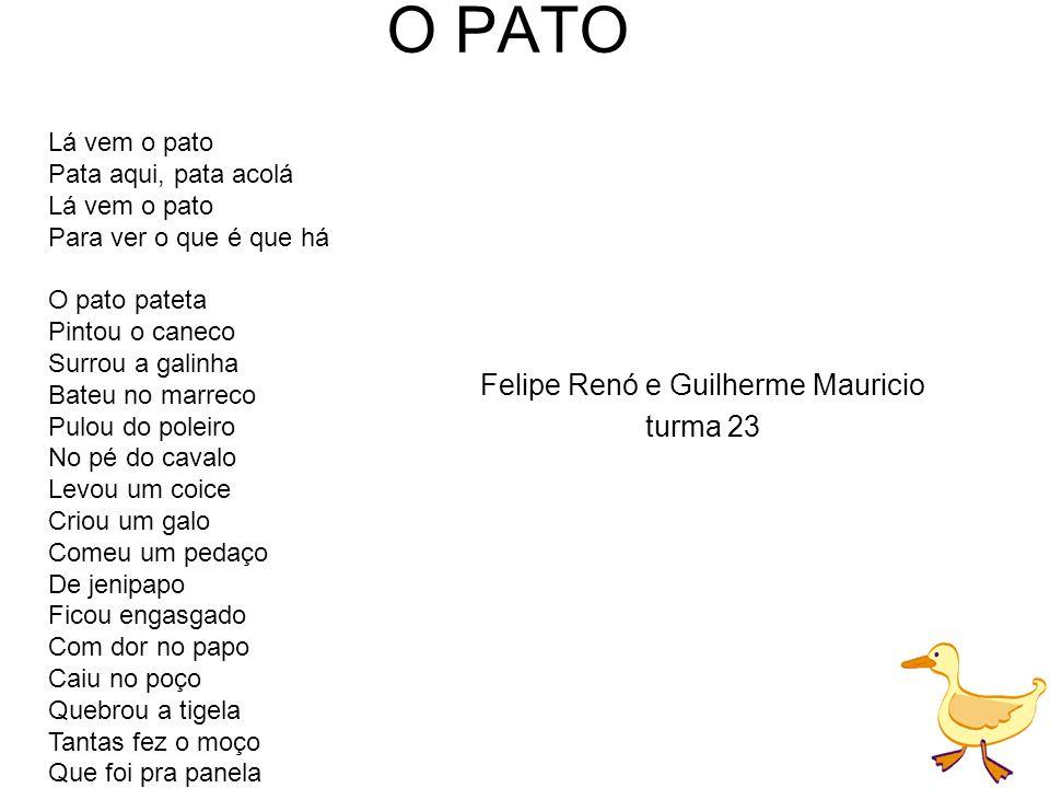 Felipe Renó e Guilherme Mauricio turma 23