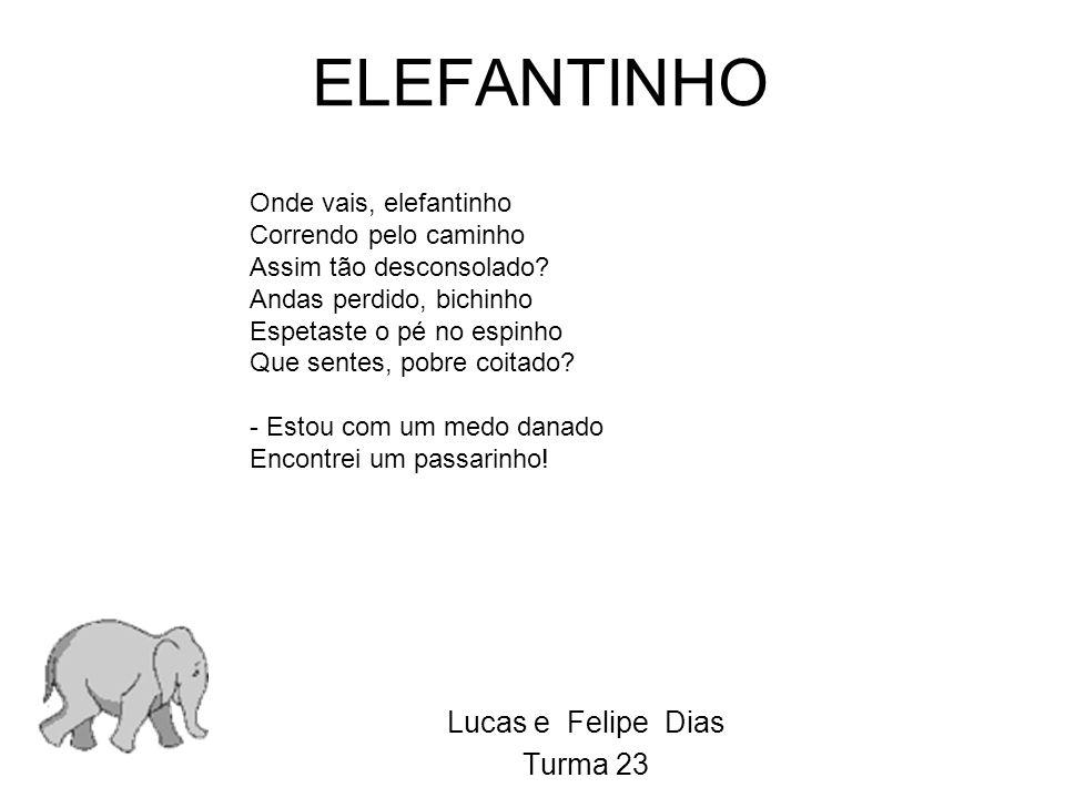 Lucas e Felipe Dias Turma 23