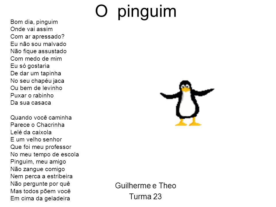 O pinguim Guilherme e Theo Turma 23