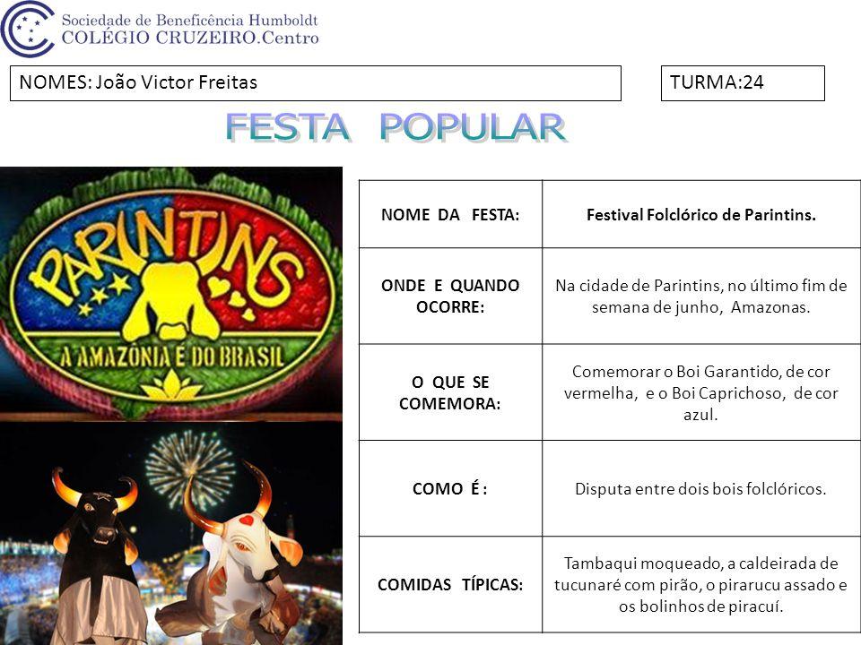 Festival Folclórico de Parintins.