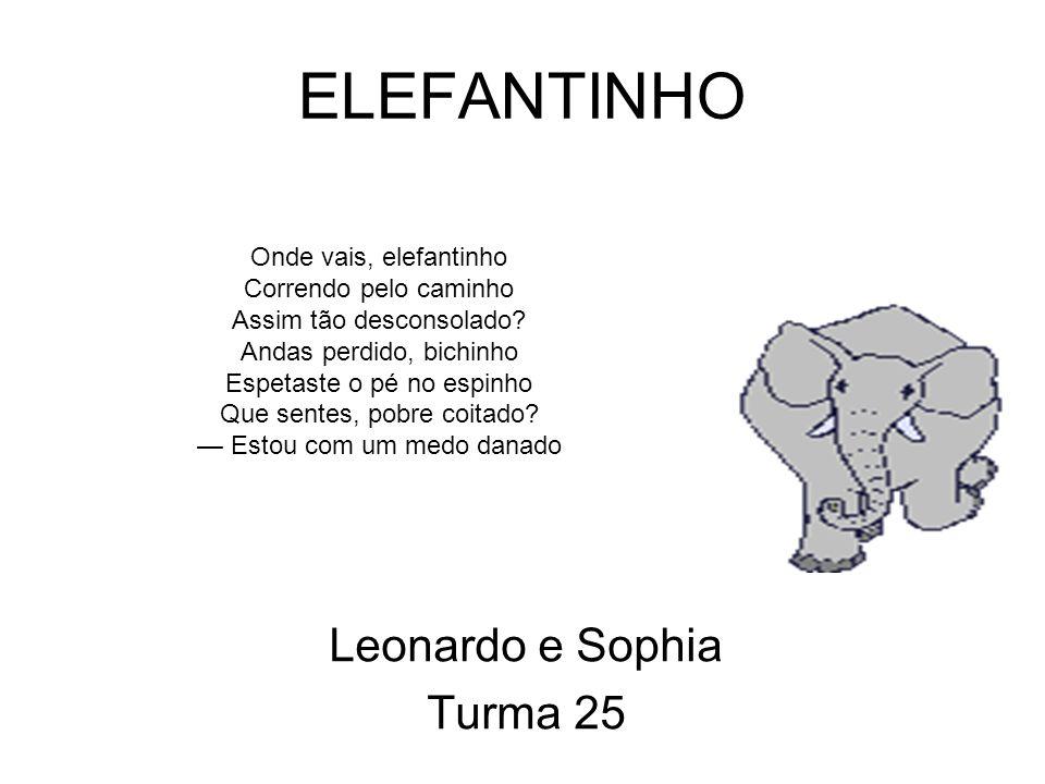 Leonardo e Sophia Turma 25