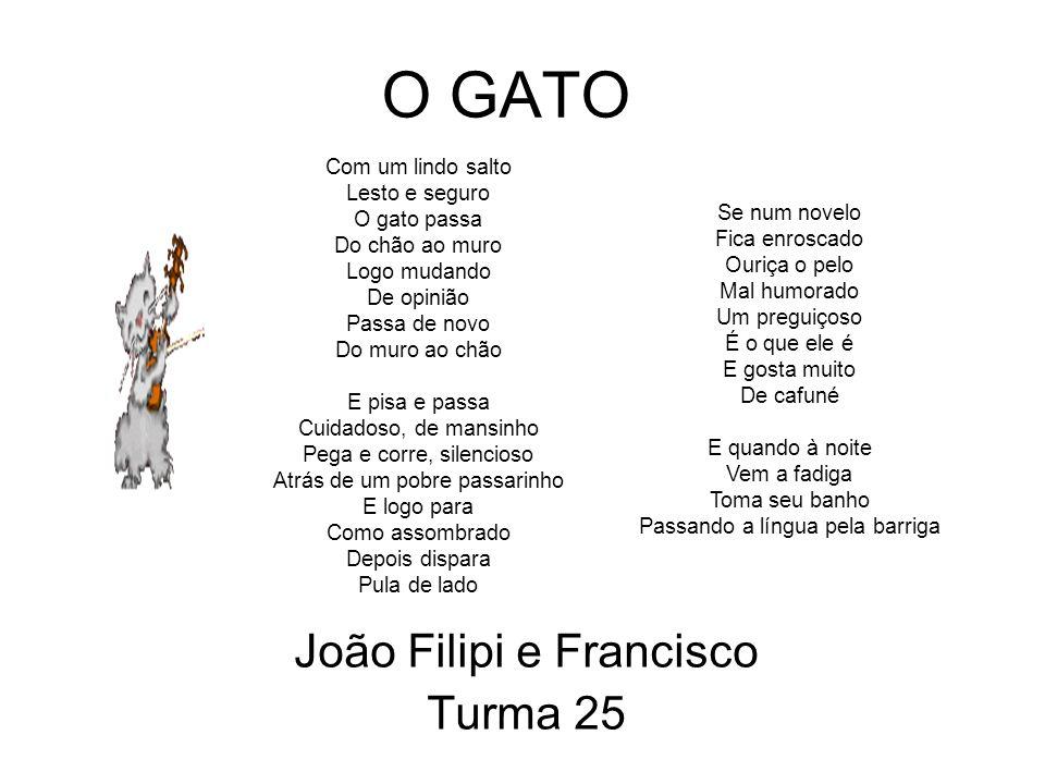João Filipi e Francisco Turma 25