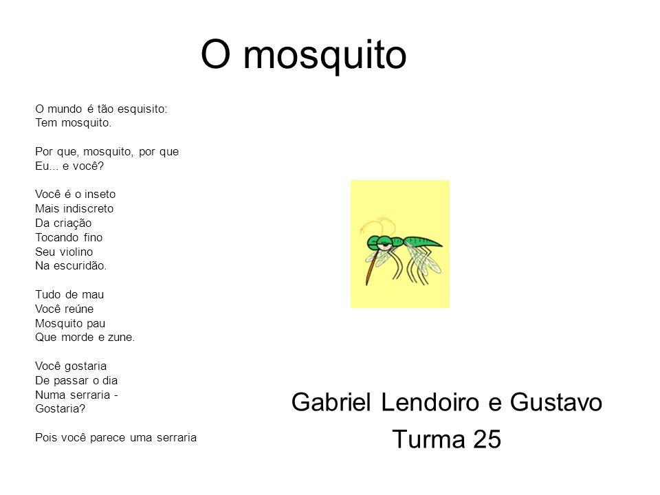 Gabriel Lendoiro e Gustavo Turma 25