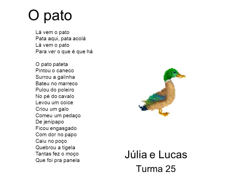 O pato Júlia e Lucas Turma 25