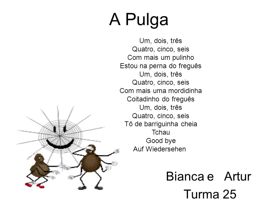 A Pulga Bianca e Artur Turma 25