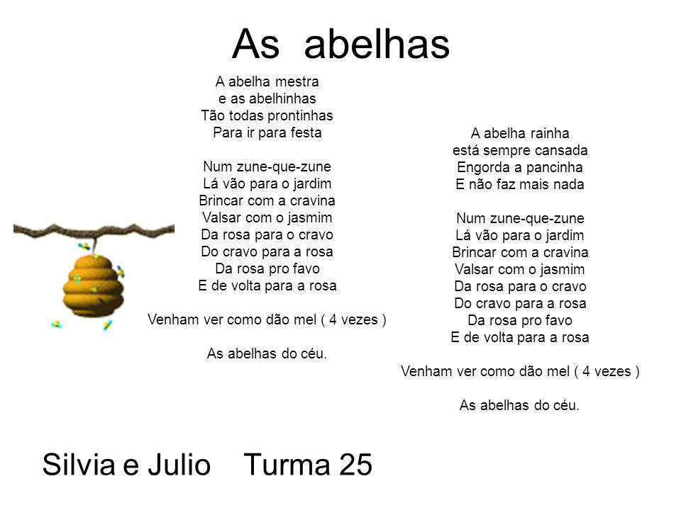 As abelhas Silvia e Julio Turma 25