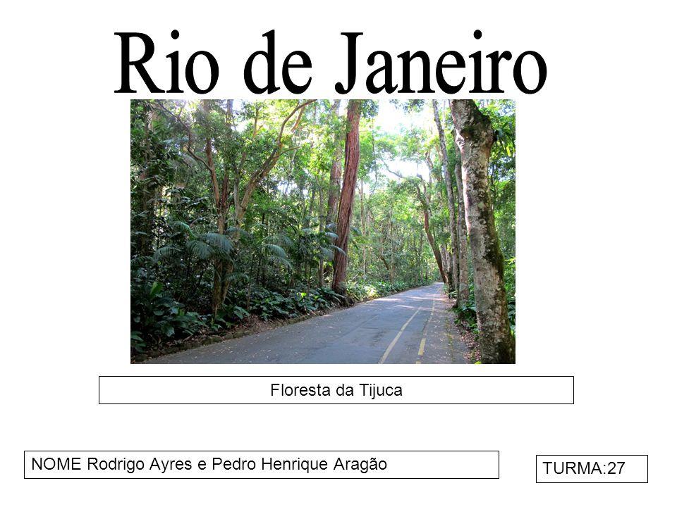 Rio de Janeiro Floresta da Tijuca