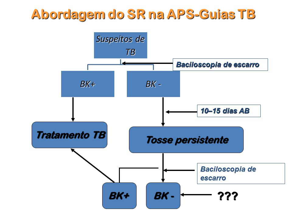 Abordagem do SR na APS-Guias TB
