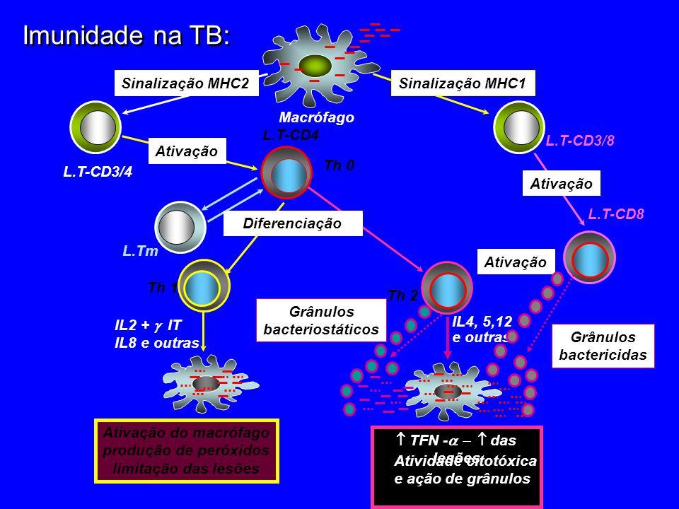 4 Imunidade na TB: Sinalização MHC1 Sinalização MHC2 L.T-CD3/8