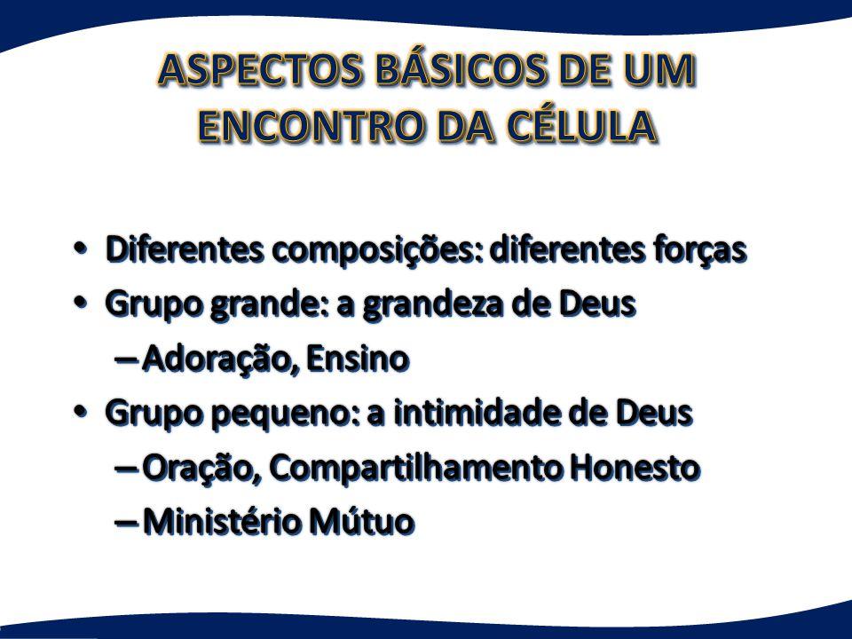 ASPECTOS BÁSICOS DE UM ENCONTRO DA CÉLULA