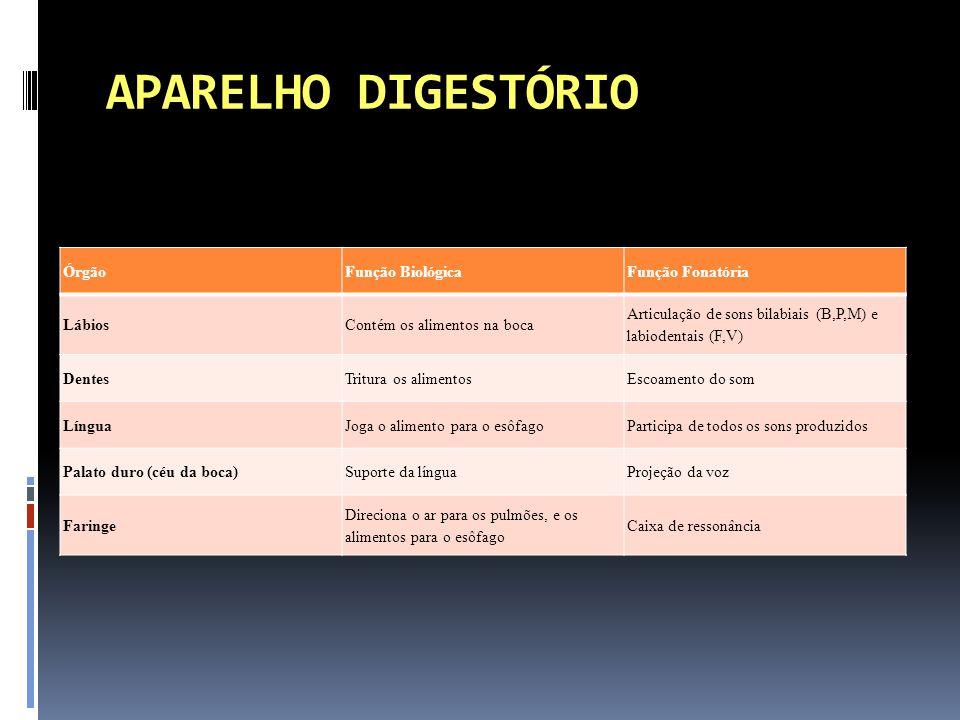 APARELHO DIGESTÓRIO Órgão Função Biológica Função Fonatória Lábios