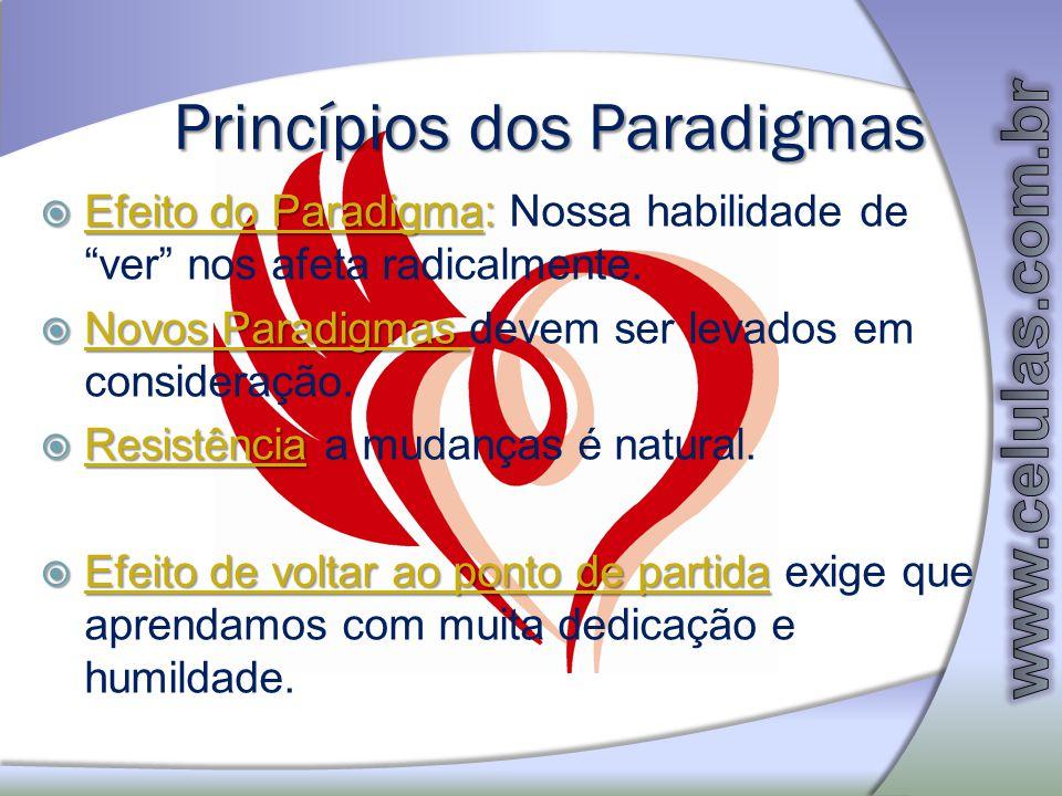 Princípios dos Paradigmas
