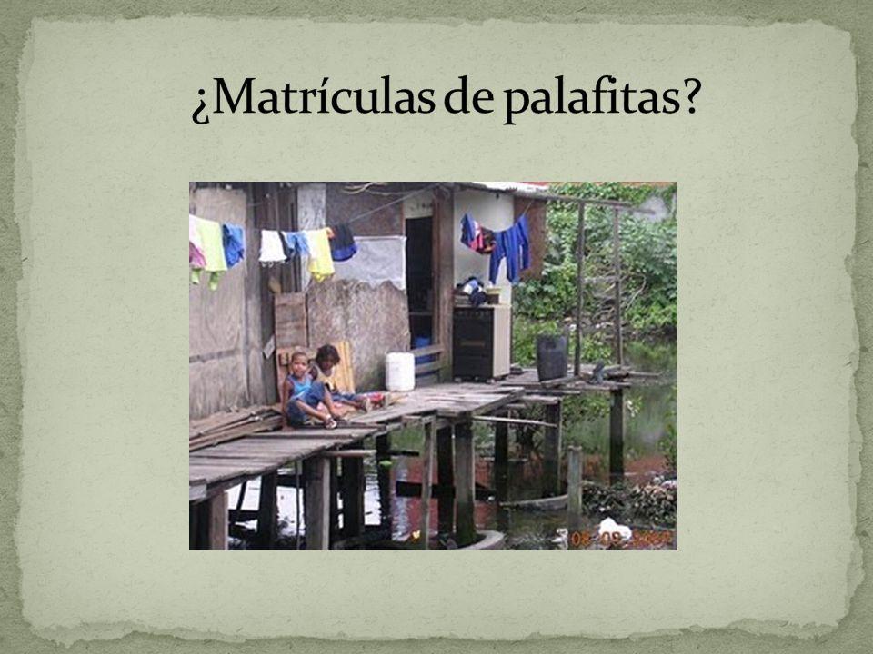 ¿Matrículas de palafitas