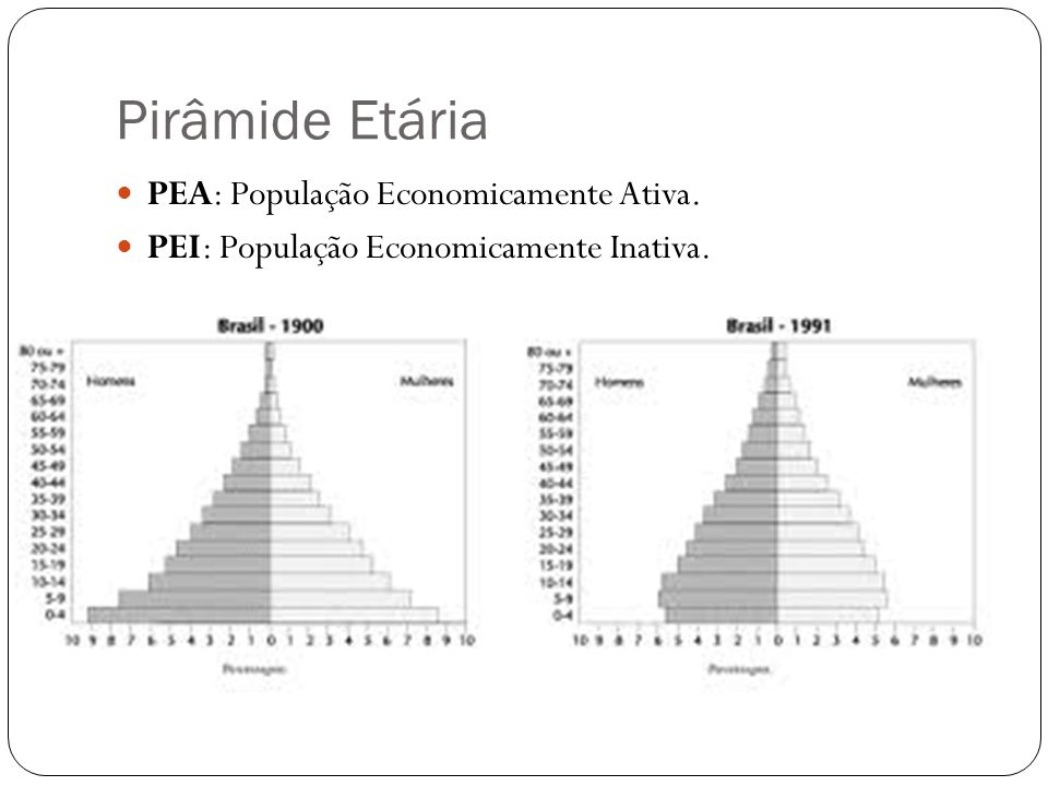 Pirâmide Etária PEA: População Economicamente Ativa.