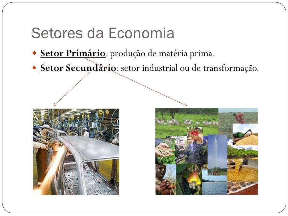 Setores da Economia Setor Primário: produção de matéria prima.