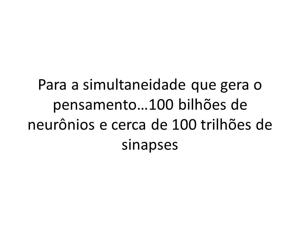 Para a simultaneidade que gera o pensamento…100 bilhões de neurônios e cerca de 100 trilhões de sinapses