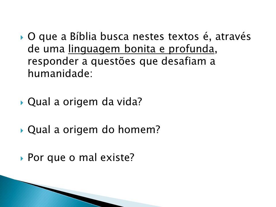 O que a Bíblia busca nestes textos é, através de uma linguagem bonita e profunda, responder a questões que desafiam a humanidade: