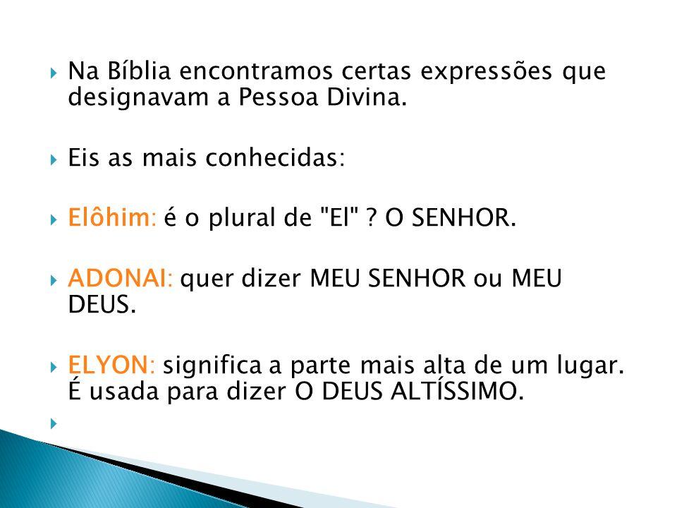 Na Bíblia encontramos certas expressões que designavam a Pessoa Divina.