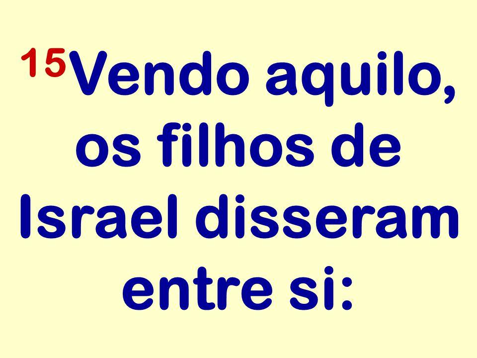 15Vendo aquilo, os filhos de Israel disseram entre si:
