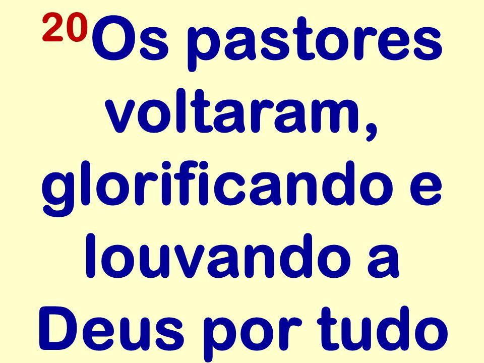 20Os pastores voltaram, glorificando e louvando a Deus por tudo