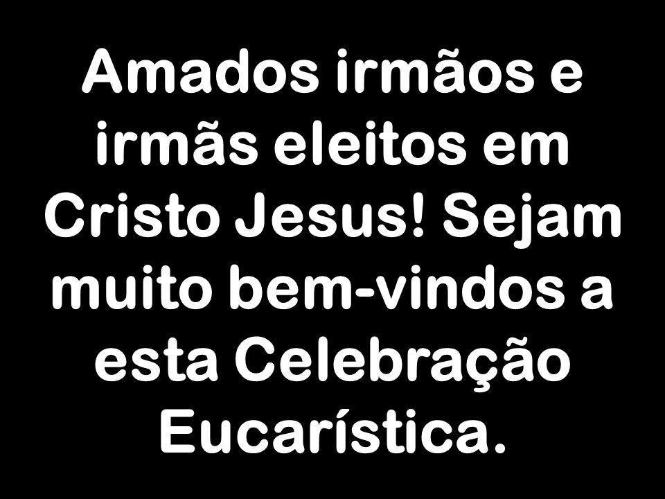 Amados irmãos e irmãs eleitos em Cristo Jesus