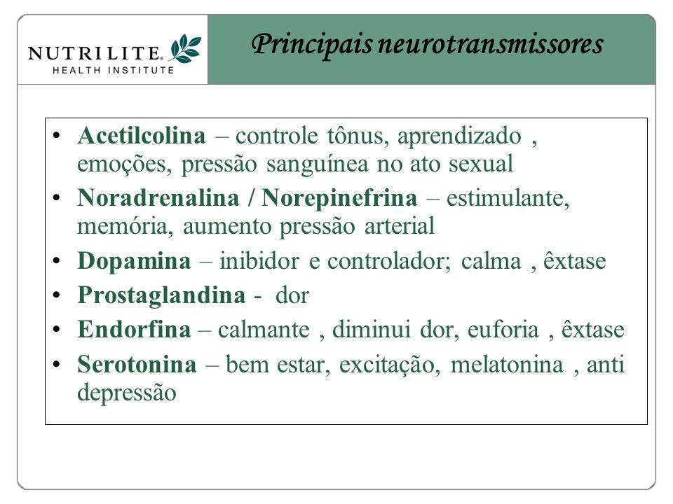 Principais neurotransmissores