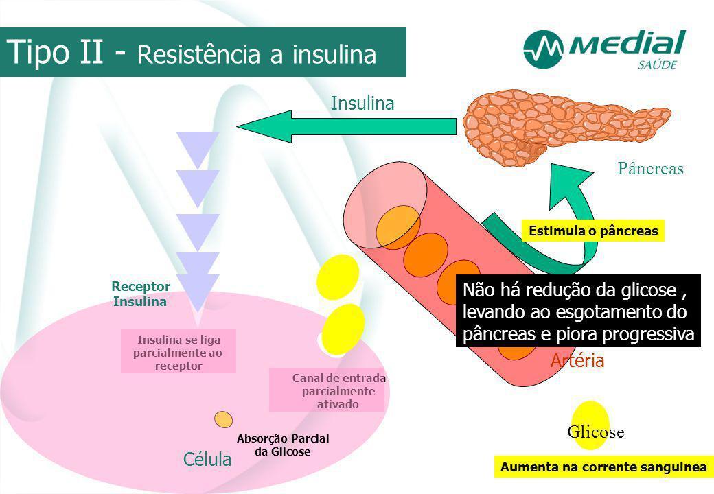 Tipo II - Resistência a insulina