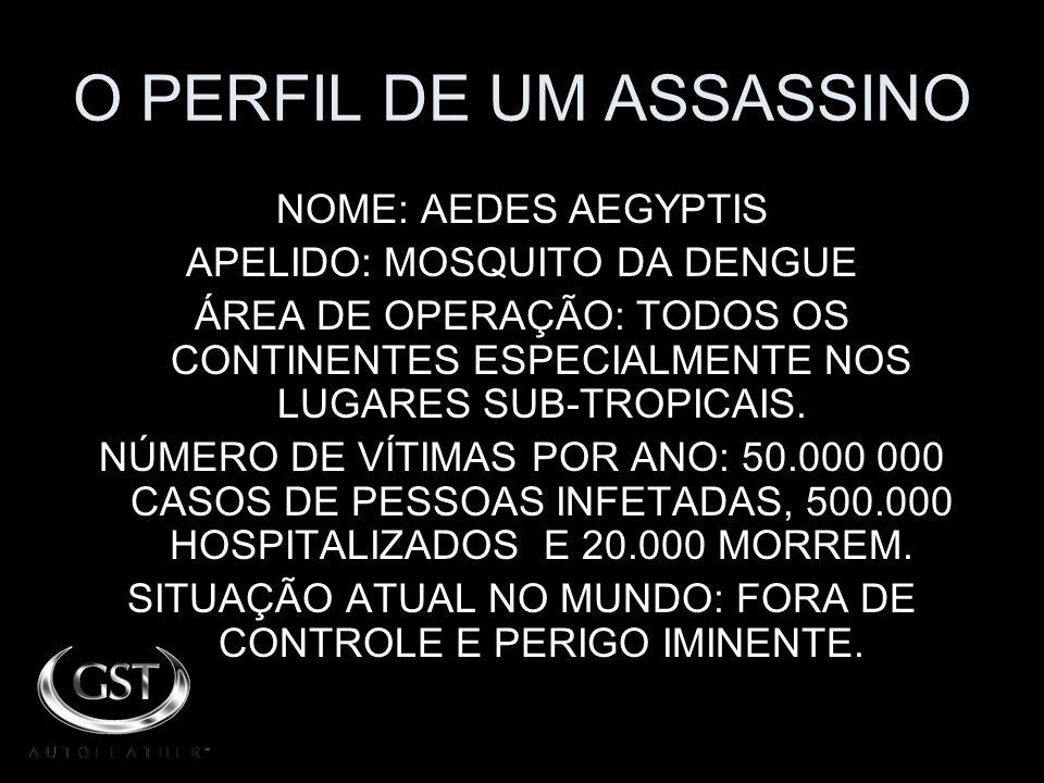 O PERFIL DE UM ASSASSINO