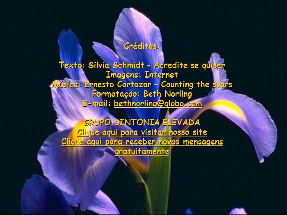 Texto: Silvia Schmidt – Acredite se quiser Imagens: Internet