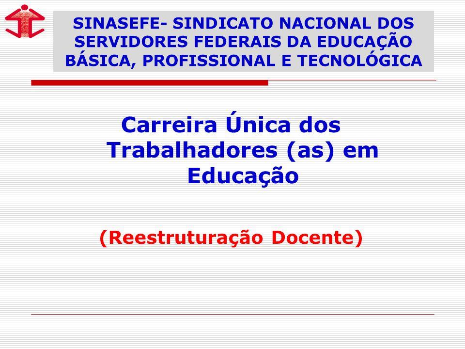 Carreira Única dos Trabalhadores (as) em Educação