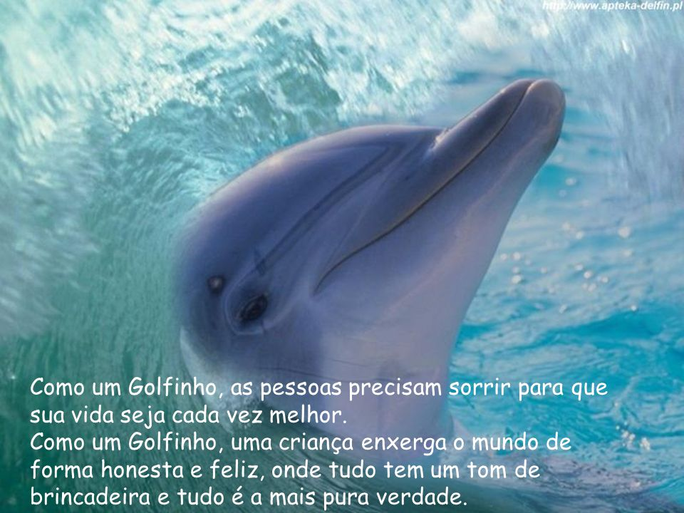 Como um Golfinho, as pessoas precisam sorrir para que sua vida seja cada vez melhor.
