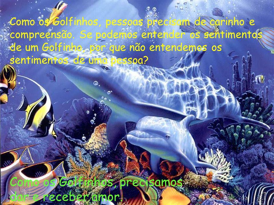 Como os Golfinhos, precisamos dar e receber amor.