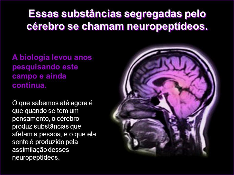 Essas substâncias segregadas pelo cérebro se chamam neuropeptídeos.