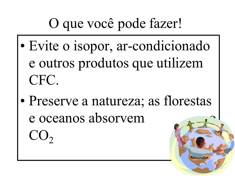 O que você pode fazer! Evite o isopor, ar-condicionado e outros produtos que utilizem CFC.